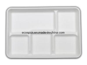 """Produtos de papel de louça compostável biodegradáveis 12,5""""X8.5""""/5 compartimentos de bandeja escolar"""