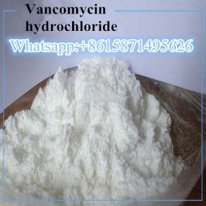 99% reiner antibakterielle Drogevancomycin-HydrochloridVancomycinHCl 1404-93-9