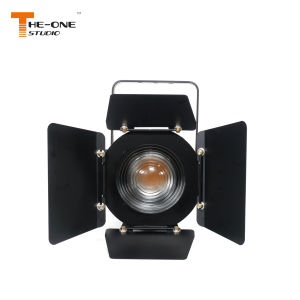 600W à LED blanche Fresnel Zoom Scène lumière