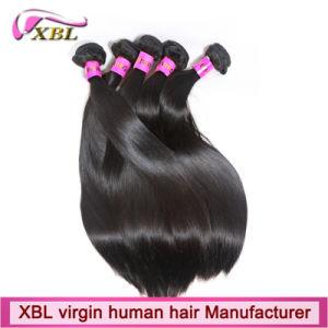 Capelli umani del Virgin dei capelli del Virgin brasiliano non trattato all'ingrosso di estensione