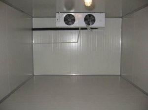 Petit congélateur à chambre froide de petite taille –Petit ...