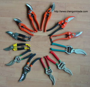 Alles Kinds von Pruning Shear