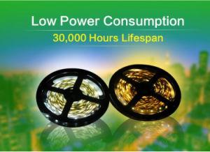 Singola riga RGB + striscia bianca 14.4 di colore completo LED della striscia 60 LED/m W IP68 di intervallo SMD5050 LED