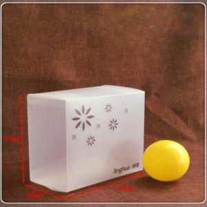 製造業者は半透明な印刷のプラスチック折るボックスをカスタマイズした