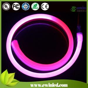 24V 10 * 20mm Digital RGB LED Neon Flex con 60PCS SMD5050