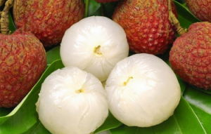 As conservas de frutas frescas Lichia em calda