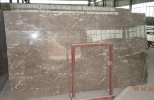 Marmo di armani brown pavimentazione di marmo polished delle