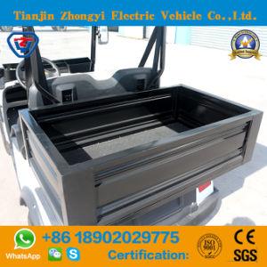 Mini 2 Lugares carrinho eléctrico com a caixa de carga