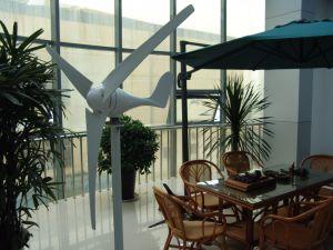 Mini moulin de turbine de vent de 100W 12V/24V/vent/générateur de vent