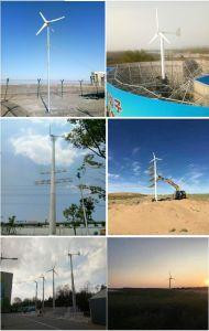 generatore di energia eolica di 3kw 220volt/generatore turbina del vento con la durata della vita lunga