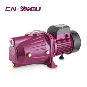 단일 위상 220V 전기 지상 제트기 각자 프라이밍 펌프 750W 1HP