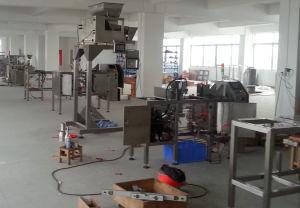 De Verpakkende Machines van de Zak van de Ritssluiting van Premade