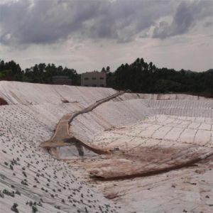 Geotessuto lungo del Nonwoven della fibra del poliestere ambientale
