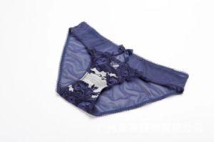 Precio al por mayor ropa interior Conjunto sujetador nuevo diseño (CS21125)