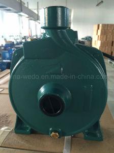 Electric Bomba de agua centrífuga (CPM-158) de 0,75 KW/1CV