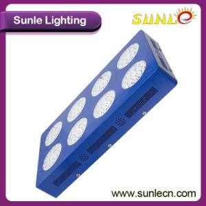 Indicatore luminoso crescente per sviluppo di pianta, indicatore luminoso di sviluppo di pianta del LED (SLRT 03) del LED