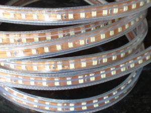 220V/127V LED flexíveis Corda (HVSMD2835-120)