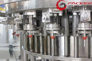 De automatische Plastic Fles Sprankelende Lijn van de Verwerking van de Verpakking van de Drank en van de Drank