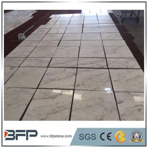 De nieuwe Tegel van de Vloer van Volakas van de Steengroeve Witte M231 Marmeren voor Bevloering