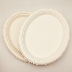 Les plaques de bagasse de canne à sucre Vente chaude plaque ovale de taille moyenne