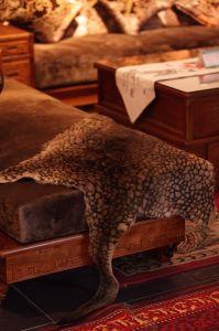 Luxuosa decoração de peles de impressão Leopard tapeçarias feitas com pele de canguru