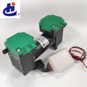 Mini-pompe à air BLDC à double tête