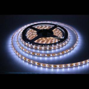 Indicatore luminoso di striscia esterno di illuminazione LED della corda LED di natale del nastro decorativo del viale