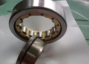 Rodamiento de rodillos cilíndricos(NU204/2204)