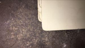 둥근 구석 승화 알루미늄 장에서 미국 자동차 면허증 격판덮개