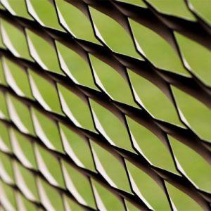 Weidedの金網の最も新しいデザイン工場価格のパネルによって拡大される金属のアルミニウム網パネル