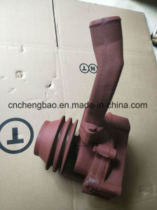 Luotuo Xichai Weichai 엔진 수도 펌프 (6RTF510000)