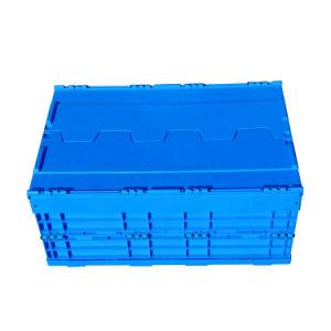 Caixa de plástico grosso para Armazenamento