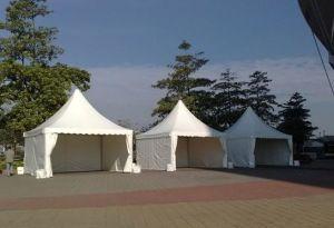 屋外式の祝祭党ドームの結婚式の望楼のテント