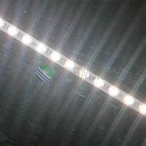 Color de 5050 RGBW que amortigua la barra ligera los 60LEDs/M del LED en la iluminación