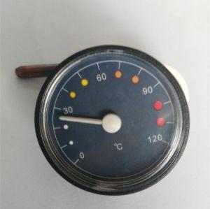 Termometro del termometro del tubo capillare Wza-St/9 con 0-120c