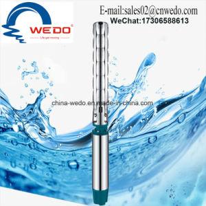 6sp17/24 de la pompe à eau submersibles d'acier inoxydable