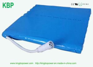 18650 pacchetto della batteria di 14.8V 30ah per l'indicatore luminoso di via solare