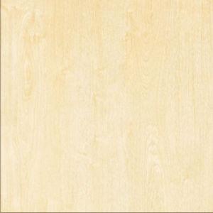 2017 poetste Populairste Foshan Van uitstekende kwaliteit Verglaasde Tegel op