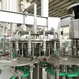 آليّة [فرويت جويس] ماء محبوبة زجاجة شراب سائل يملأ تعليب يعبّئ مجموعة آلة