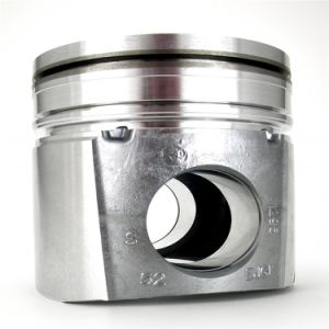 디젤 엔진 장비 4937512 Cummins를 위한 6L 연료 분사 장치