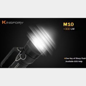M10 het Multifunctionele OpenluchtFlitslicht van de Visserij