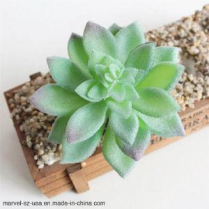 装飾的な花の小型緑の擬似Succulentsのプラント人工的な水気が多いプラント