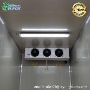 魚、肉、鶏、フルーツ野菜のための力セービングの低温貯蔵部屋