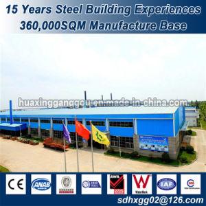 Magazzino ideale standardizzato di fabbricazione della Cina delle soluzioni