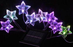 Cadena Estrella Solar luz de navidad con estrellas