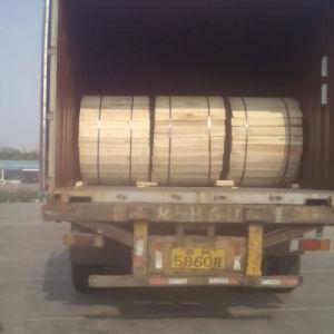Piscina 6 Fios de aço do Tubo Central do Núcleo Armored Cabo de Fibra Óptica