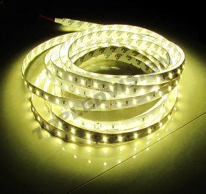 Strisce del LED con 1200lm/M e 12W/M