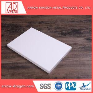 Poeder die de Lichtgewicht gemakkelijk Geassembleerde Bekleding van de Muur van het Aluminium voor Decoratie met een laag bedekken
