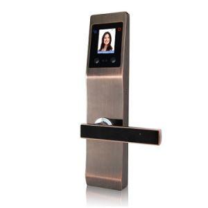 Het biometrische Slot van de Deur van de Palm van de Erkenning van het Gezicht Gezichts Slimme