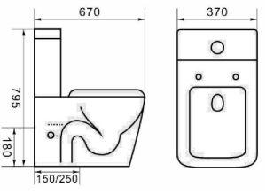 Керамические влаги фонового изображения из двух частей туалета с фитинга бака Geberit (6014)